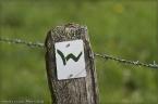 wwsteig_02