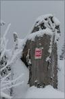 2013_winterbilder_11