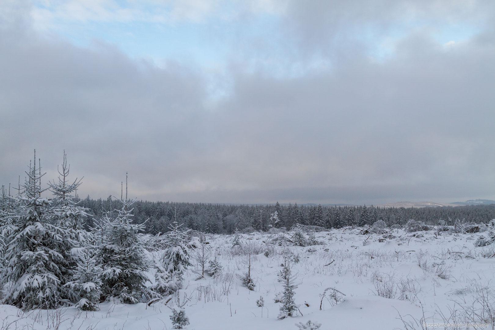 202101_winter_01