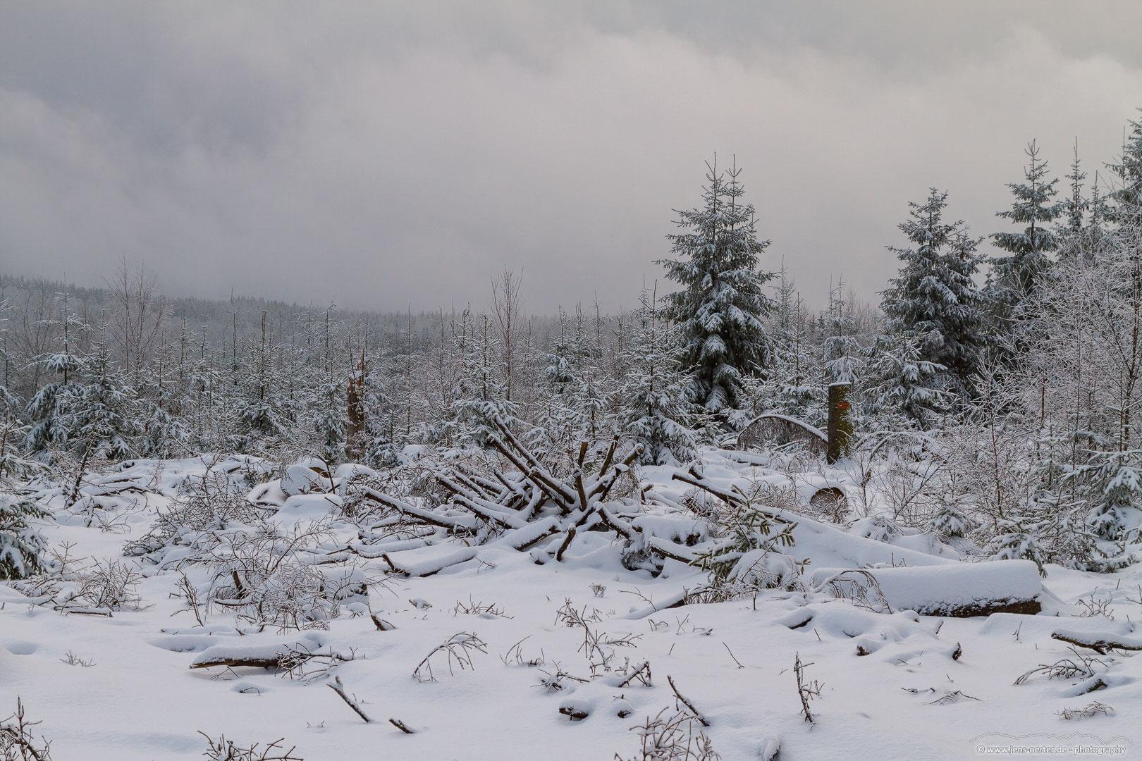 202101_winter_05
