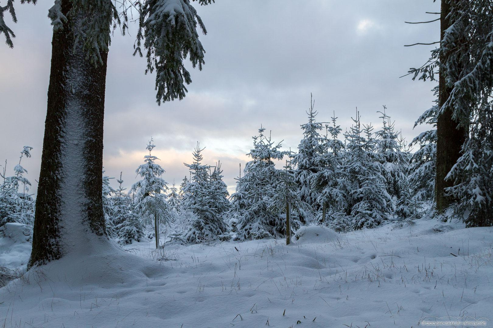 202101_winter_07
