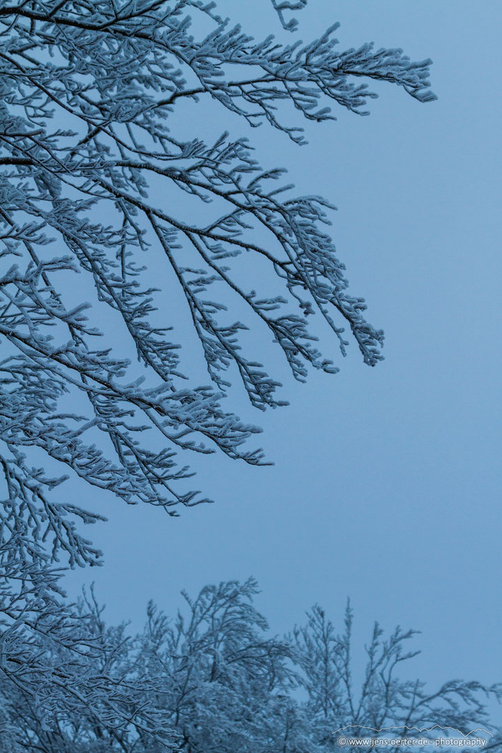 202101_winter_13