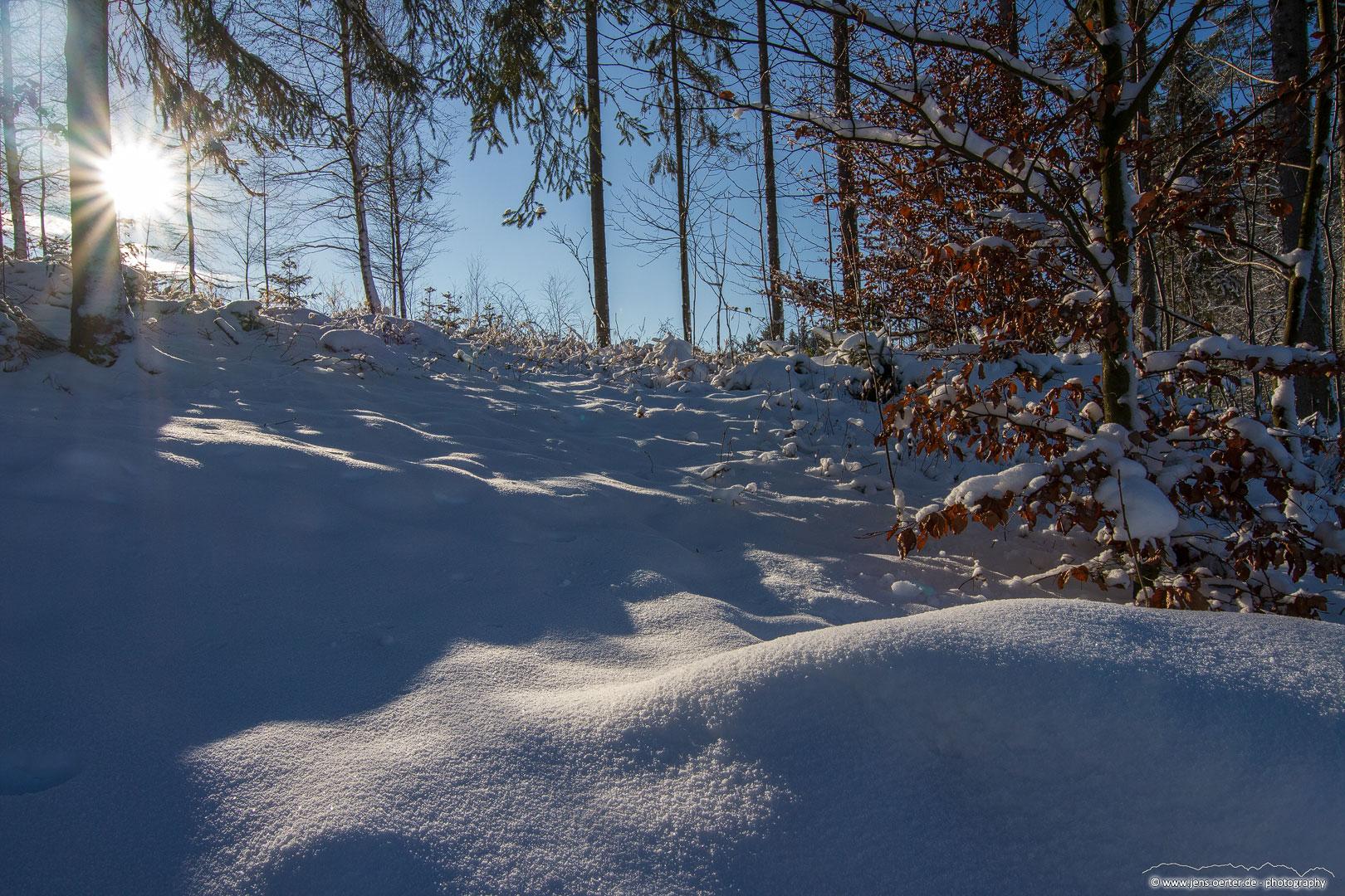 202101_winter_29
