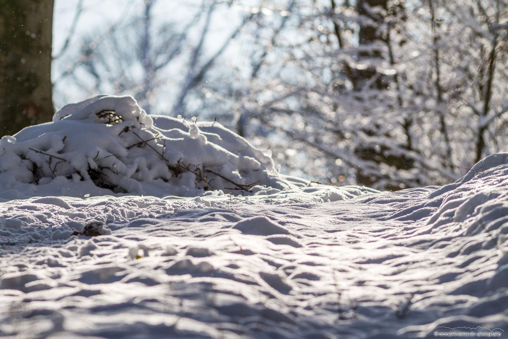 202101_winter_30