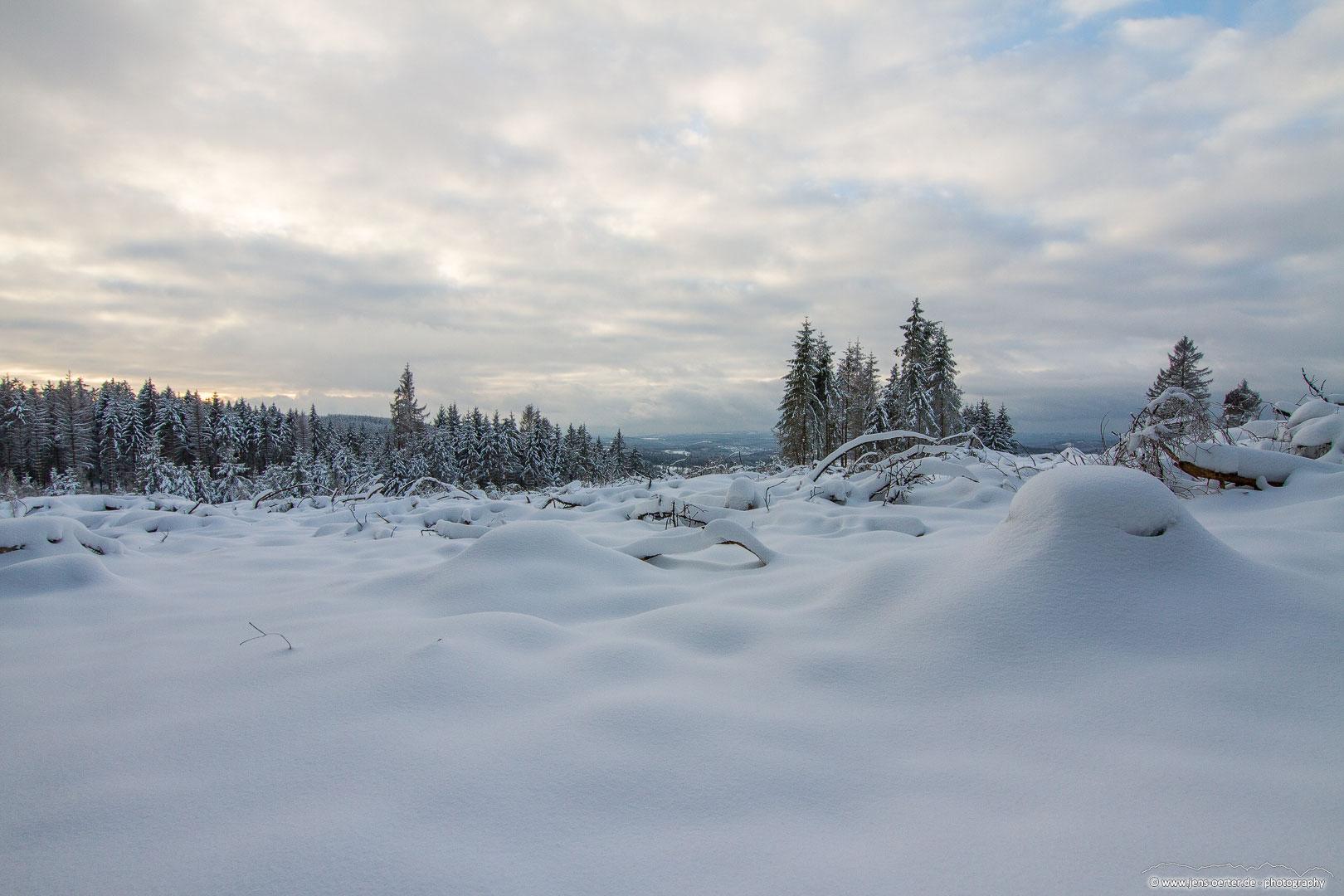 202101_winter_33