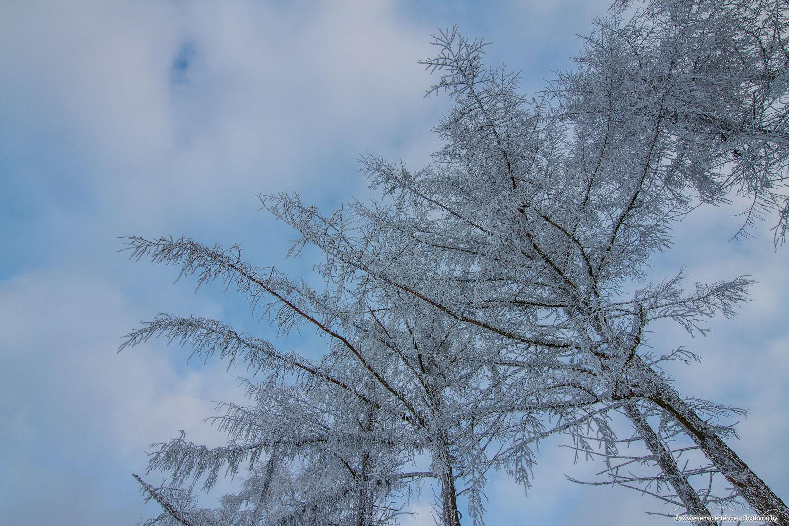202101_winter_35